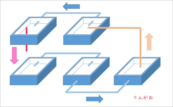 自作する栽培装置イメージ